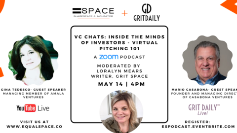 VC CHATS: Inside The Minds of Investors – Virtual Pitching 101